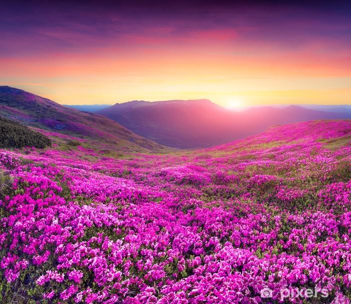 Nálepka Pixerstick Kouzelné růžové rododendron květy na horách - Louky, pole a tráva