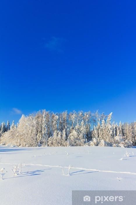 Fototapeta winylowa Radosne Szczęśliwego Zima - Natura i dzicz