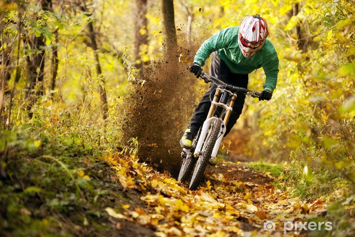 Fototapeta winylowa Mountainbiker jazdy w lesie jesienią - Kolarstwo