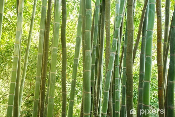 Sticker Pixerstick Bambou foret - Thèmes