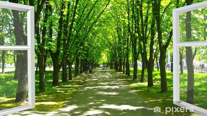 Fototapeta zmywalna Okno otwarte na piękny park z wieloma zielonymi drzewami - Tematy
