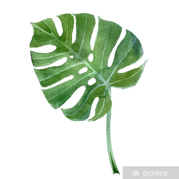 Pixerstick Sticker Blad aquarel monstera - Bomen