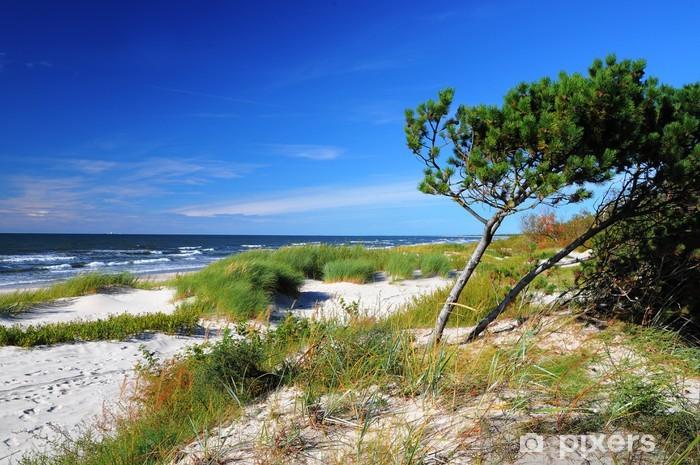 Pixerstick Sticker Zonnige strand van de Baltische Zee - Seizoenen
