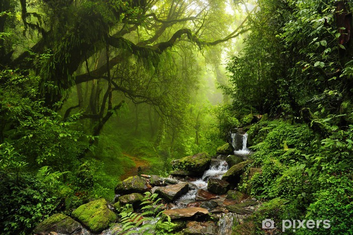 Fotomural Estándar Selva de Nepal - iStaging