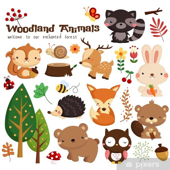 Animal woodland vector set Vinyl Wall Mural - Mammals