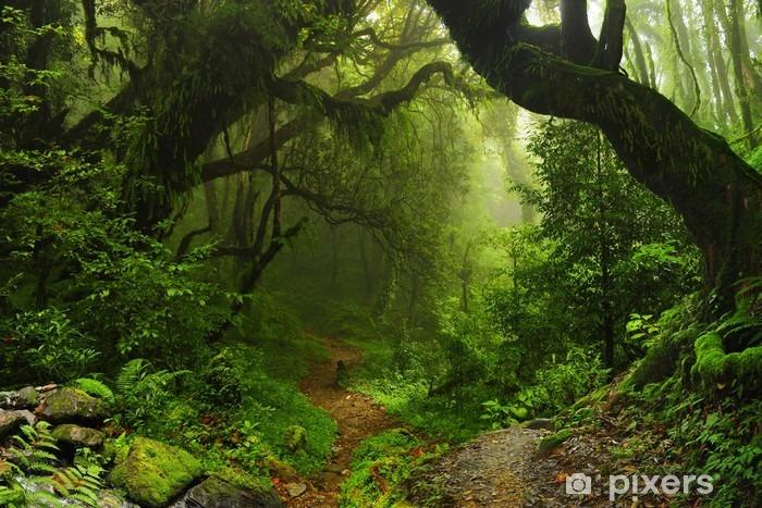 Papier peint vinyle Forêt de la jungle népalaise - Brésil