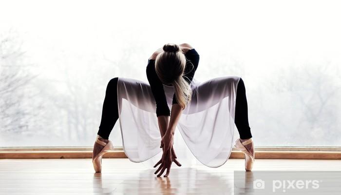 Papier peint vinyle Danceur de ballet - Thèmes