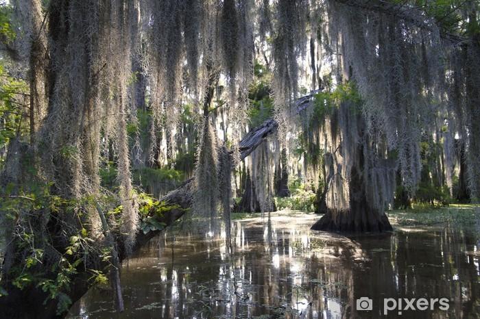 Afwasbaar Fotobehang Bayou Scène met Spaans Mos Swamp - Amerika