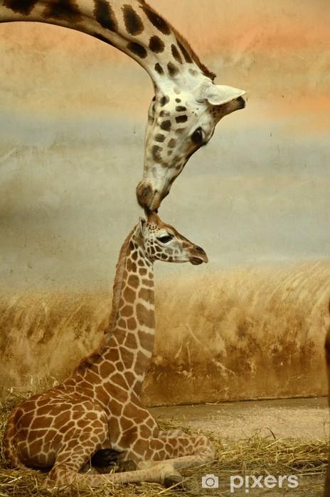 Mother-giraffe and baby-giraffe Vinyl Wall Mural - Themes