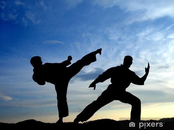 Fototapet av Vinyl Karate - Teman