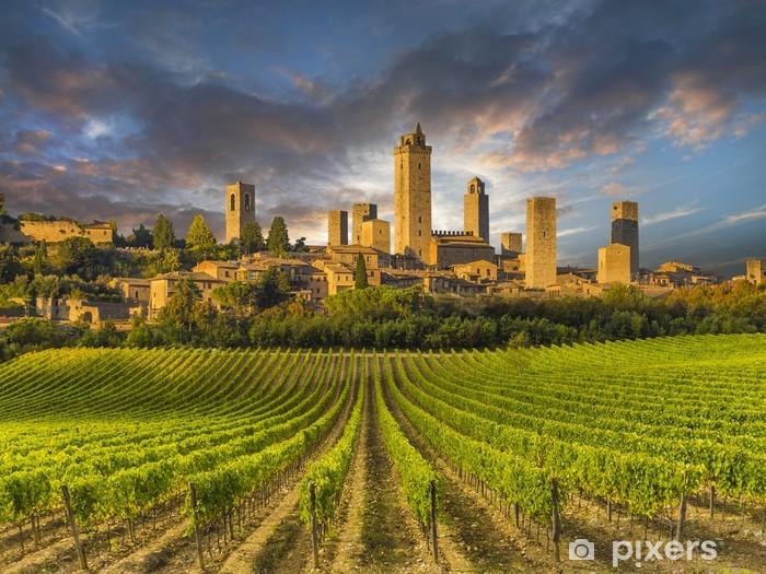 Fototapeta winylowa Winnice San Gimignano, Toskania, Włochy - Europa