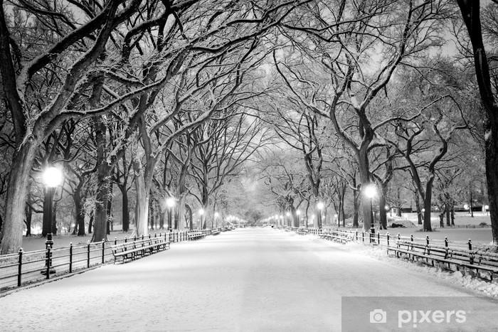 Vinilo Pixerstick Central Park, Nueva York cubierto de nieve en la madrugada - Ciudades norteamericanas