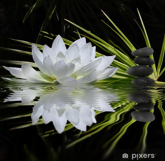 Carta da Parati in Vinile Profumo zen - Temi