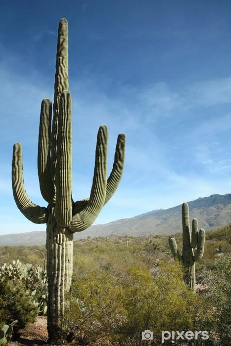 Pixerstick Sticker Reuzesaguarocactus, Saguaro National Park, Arizona - Amerika