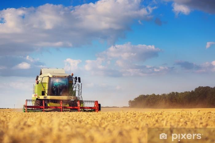 Fototapeta winylowa Kombajn do zbioru roboczego w polu pszenicy - Pory roku