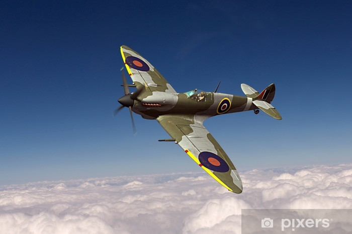 Supermarine Spitfire Vinyl Wall Mural - Signs and Symbols