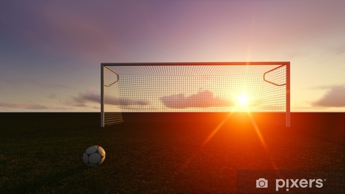 Fototapeta zmywalna Cel piłka nożna na boisku piłkarskim - Sport