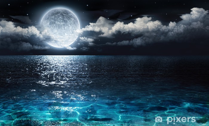romantic and scenic panorama with full moon on sea to night Vinyl Wall Mural - Water