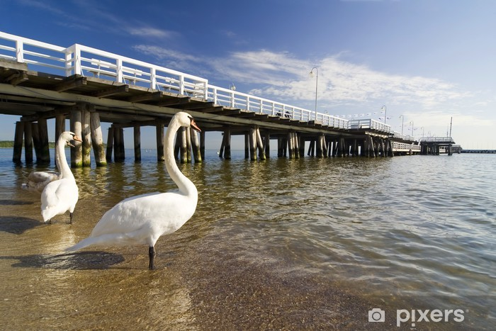 the pier in Sopot with swan Pixerstick Sticker - Themes