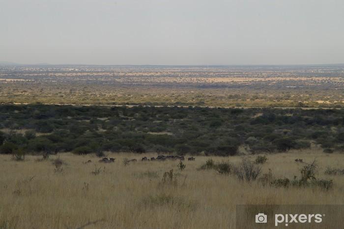 Fototapeta winylowa African plain - Afryka