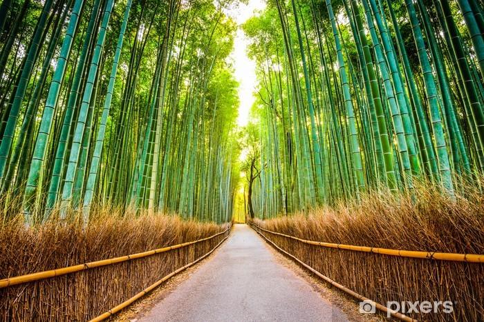 Vinil Duvar Resmi Kyoto, Japonya Bambu Ormanı - Japonya