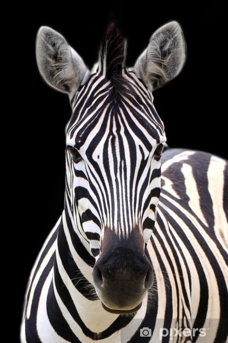 Sticker Pixerstick Zebra isolé sur noir - Thèmes