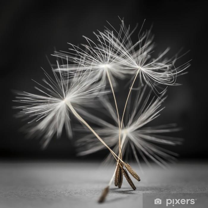 Naklejka Pixerstick Nasiona mniszka stojąca - Rośliny