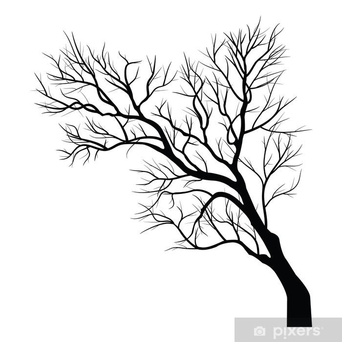 Fototapeta winylowa Drzewa z martwych gałęzi - Cuda natury