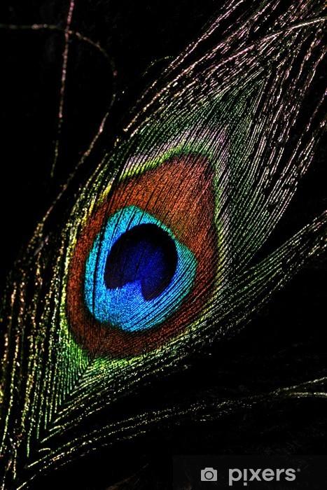 Papier peint vinyle Peacock feather - Art et création