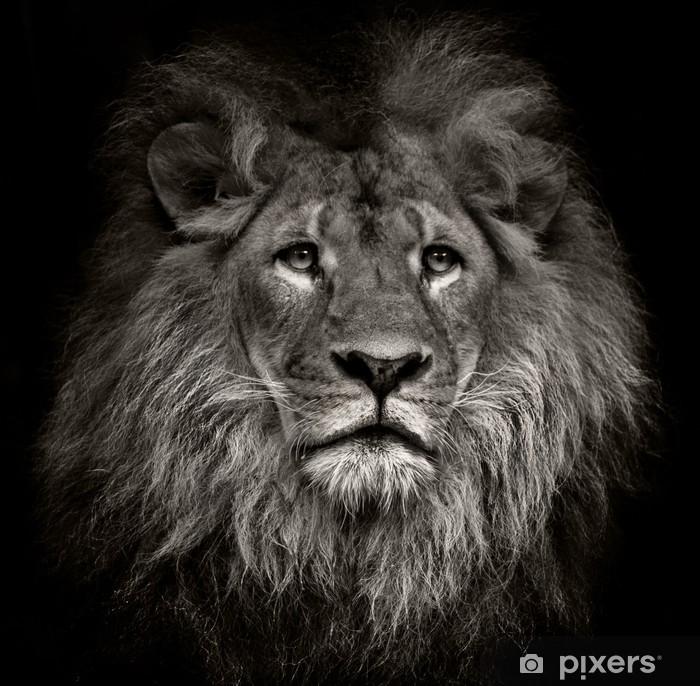 Kibirli aslan