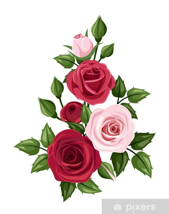 Red and pink roses. Vector illustration. Wall Mural • Pixers® • We live to  change