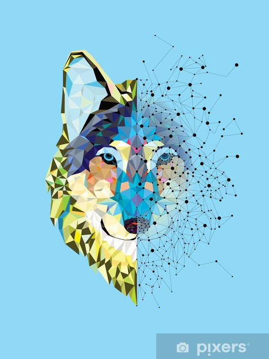 Wolf head in geometric pattern with star line vector Vinyl Wall Mural - Mammals