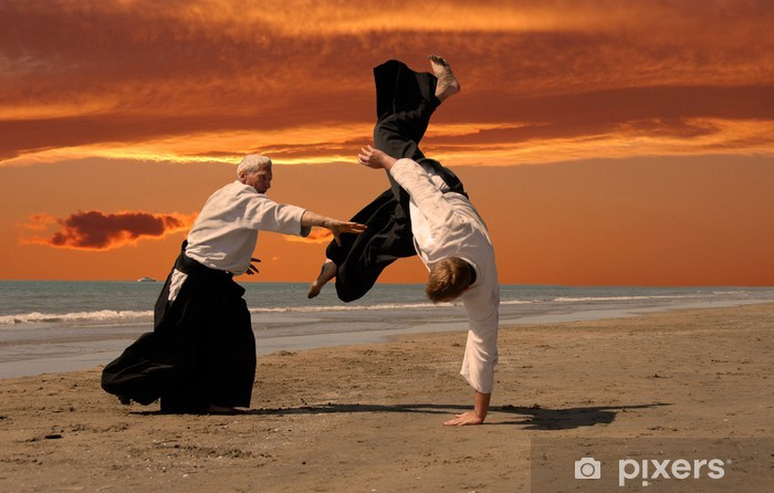 Fototapet av Vinyl Aikido vid solnedgången - Karate