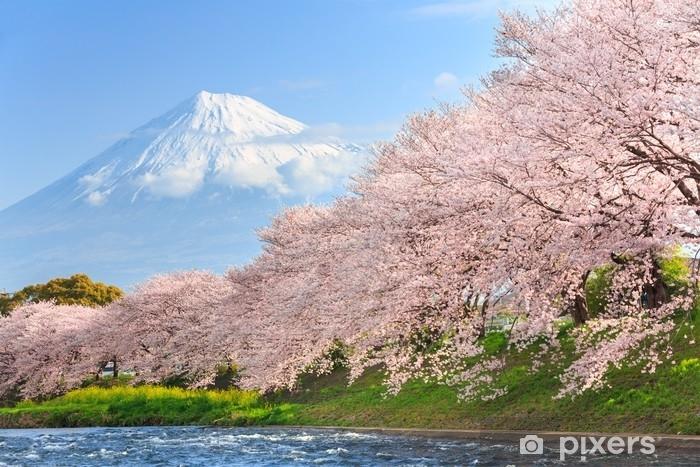 Fototapeta winylowa Kwiaty wiśni lub sakura i góry fuji w tle - Podróże