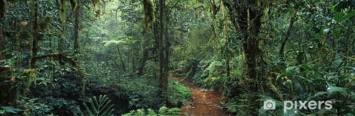 Afwasbaar Fotobehang Jungle - Zoogdieren