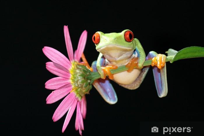 Naklejka Pixerstick Czerwony eyed drzewa żaba - Ameryka