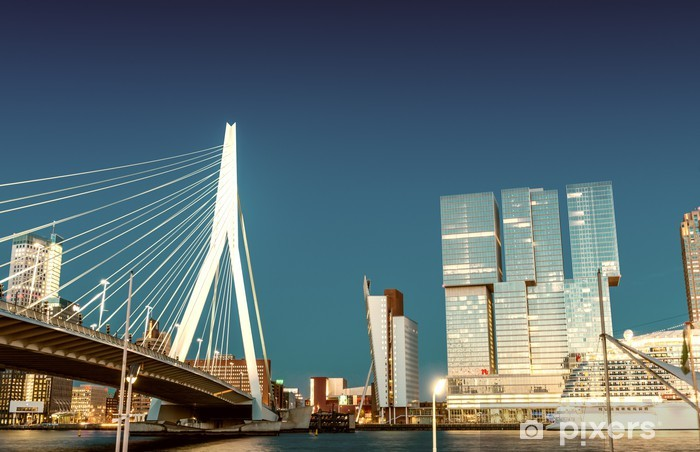 Vinyl Fotobehang Skyline van Rotterdam van Erasmusbrug - Thema's