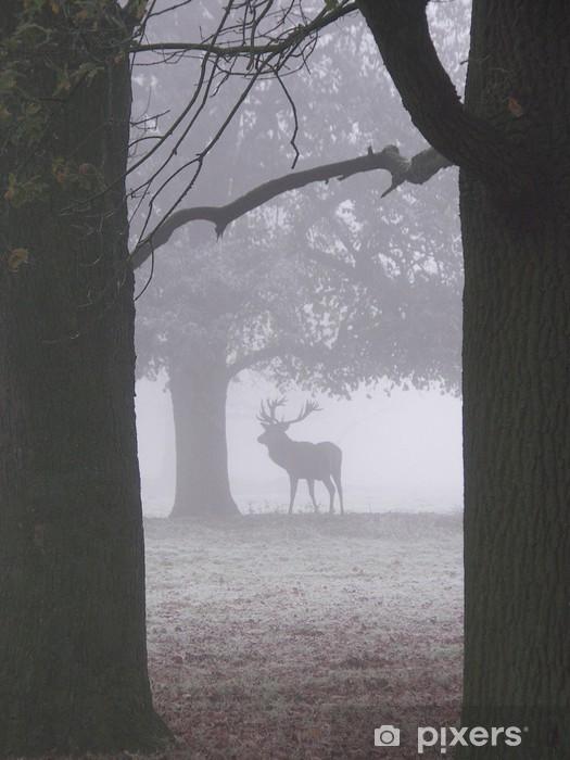 Papier peint vinyle Le cerf de brouillard - Mammifères