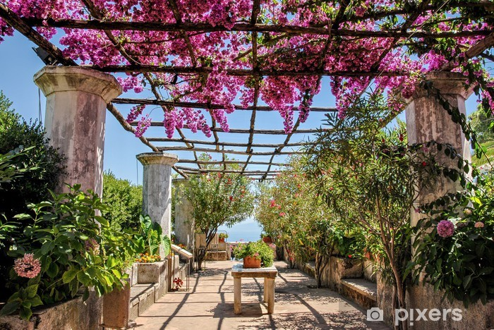 Fototapeta winylowa Costiera Amalfitana, fioritura - Pejzaż miejski