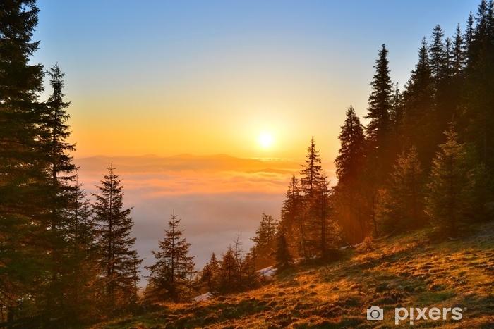 Pixerstick Aufkleber Berge des Sonnenaufgangwaldes im Frühjahr - Landschaften