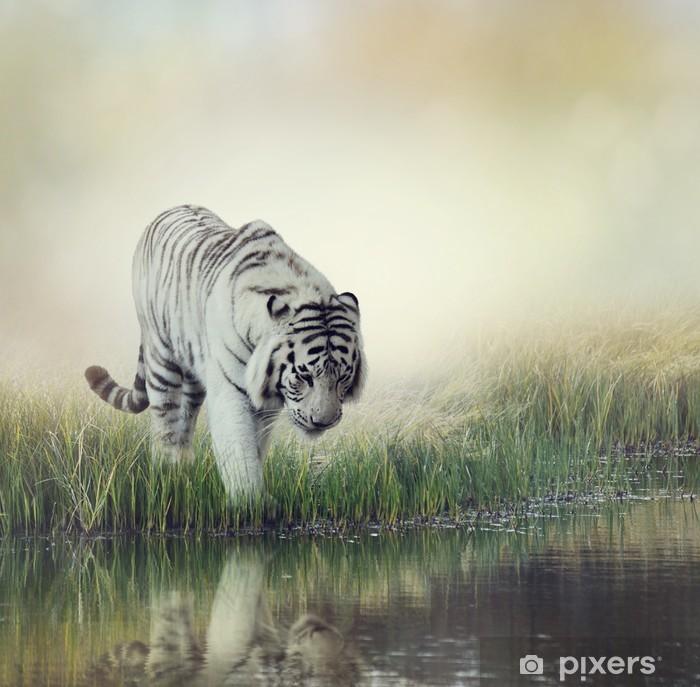 Fototapeta winylowa Biały tygrys - iStaging
