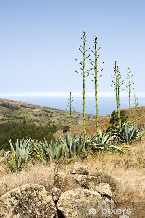 Papier peint vinyle La floraison des plantes d'agave sur la colline, El Hierro - Europe