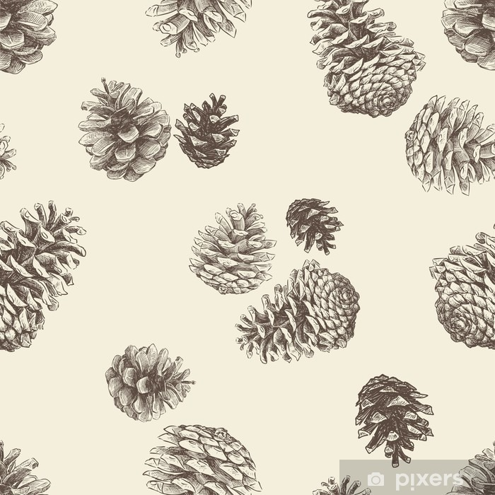Mønster af pinecones Vinyl fototapet -