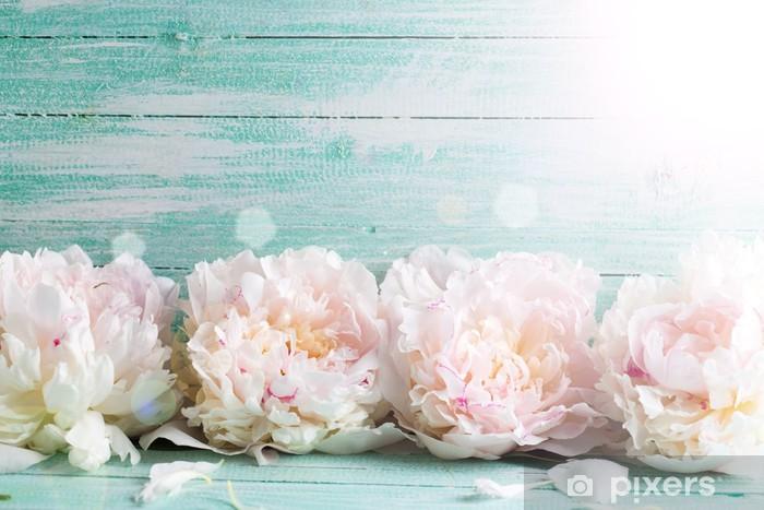Nálepka Pixerstick Pivoňky květiny - Květiny