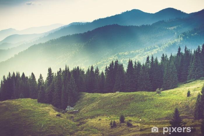 Fotomural Estándar Hermoso paisaje de montaña de verano - Montañas