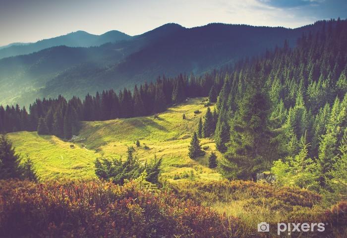 Vinylová fototapeta Krásné letní horské krajiny na slunci. - Vinylová fototapeta