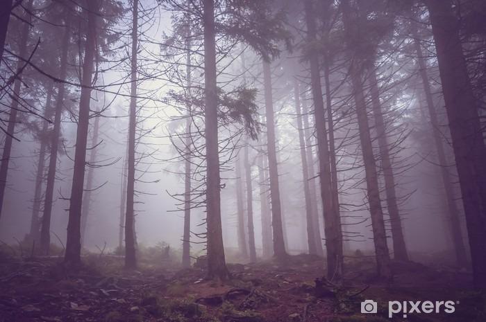 Fototapeta winylowa Mgła w lesie latem nawiedzonym - Krajobrazy