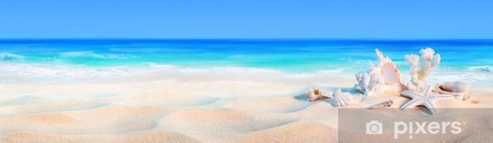 Naklejka Pixerstick Muszle na brzegu morza - tło wakacje na plaży - Hobby i rozrywka