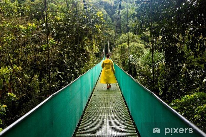 Fototapeta winylowa Kostaryka Regenwald - Krajobrazy