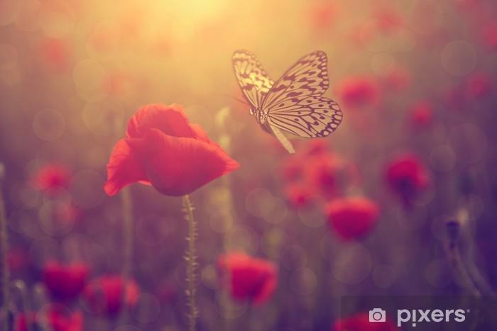 Fototapeta winylowa Poppy i motyl - Kwiaty